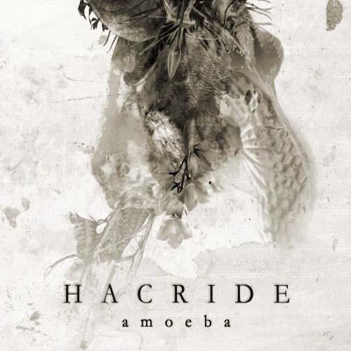 Hacride – Amoeba