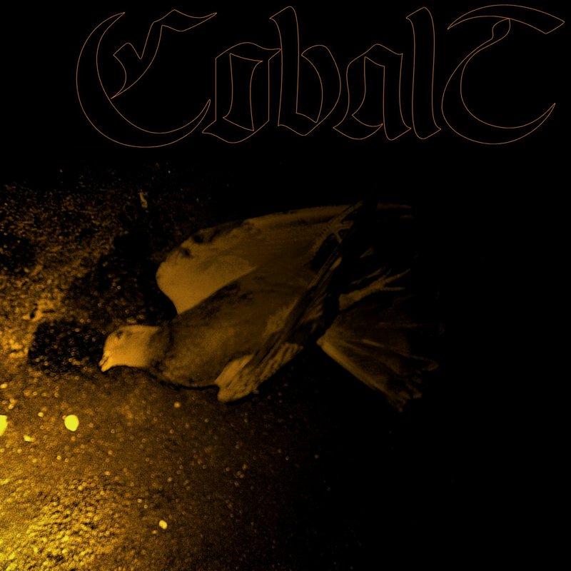 Cobalt – Eater of Birds
