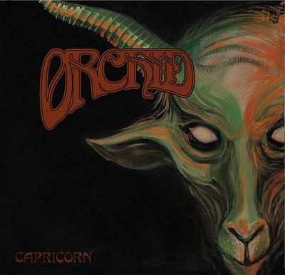 Orchid – Capricorn