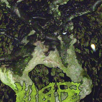 Vaz – Chartreuse Bull