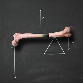 Celebrate – Balanced Bones