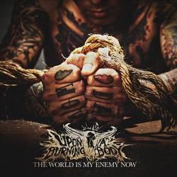 uponaburningbody-theworld