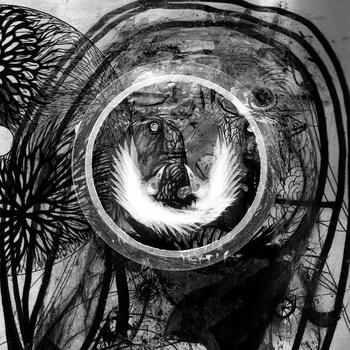 Sonance – Blackflower