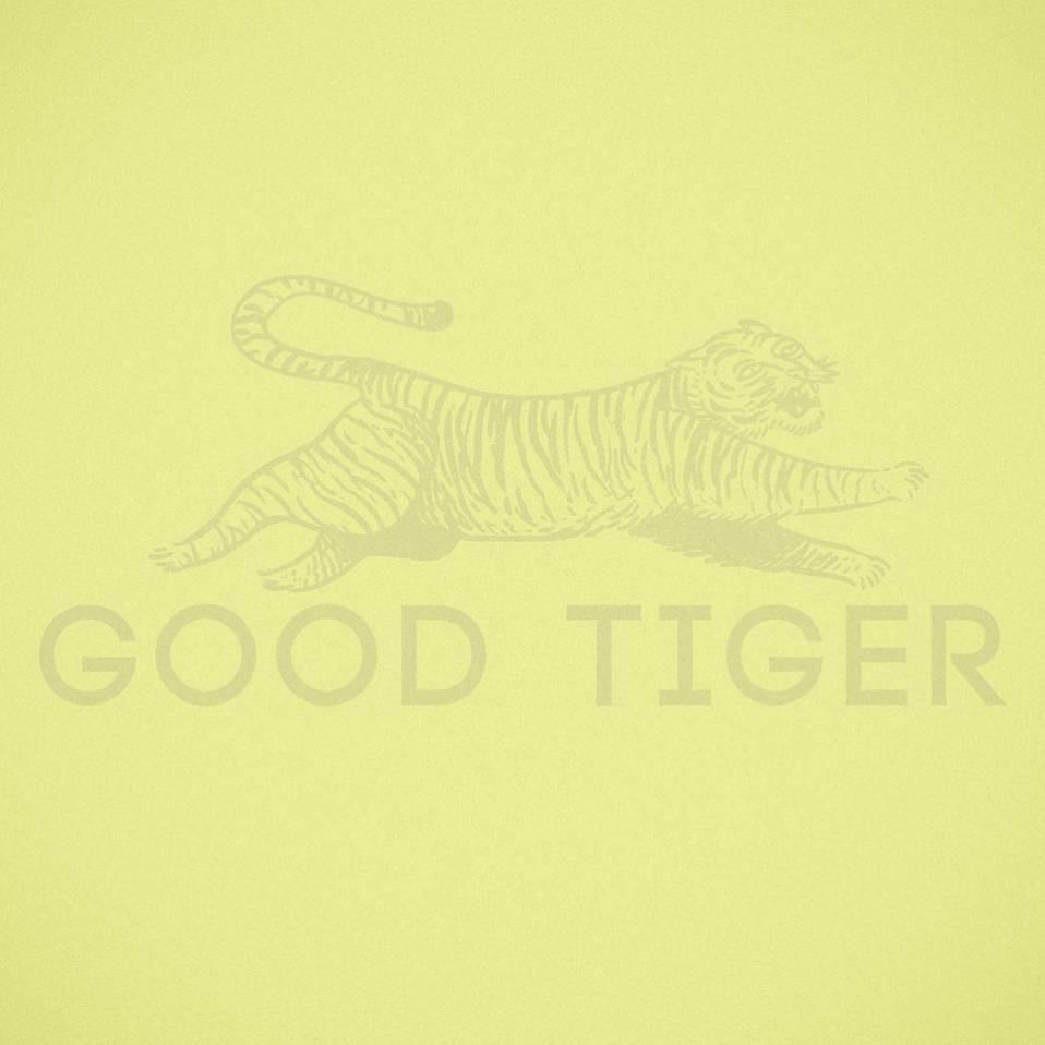Good Tiger – A Head Full of Moonlight