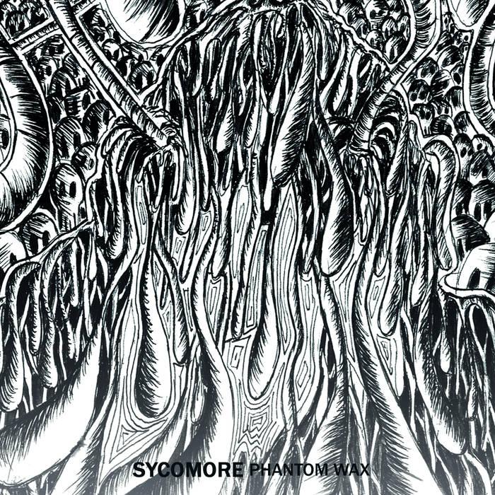 Sycomore – Phantom Wax