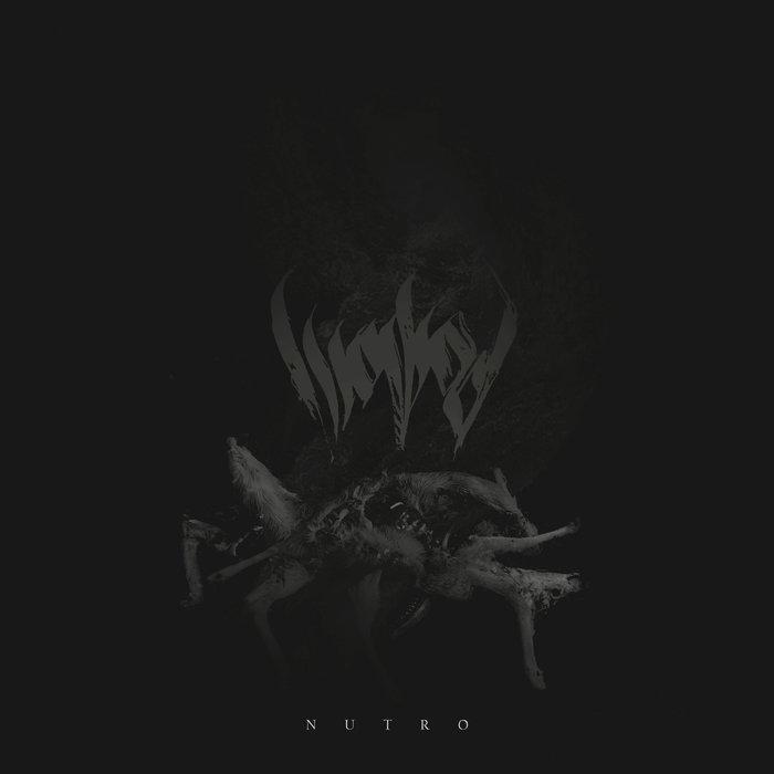 Wowod – Nutro