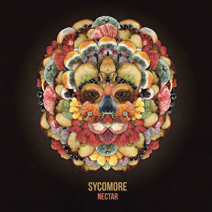 Sycomore – Nectar