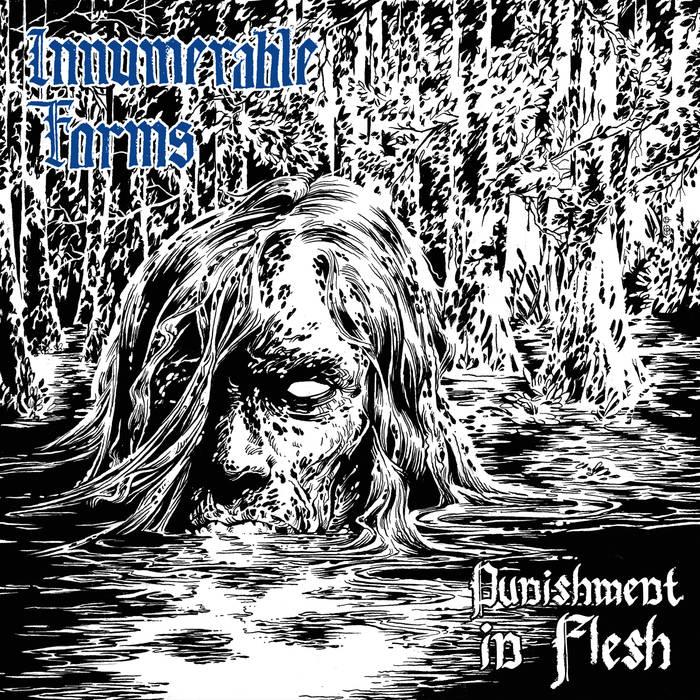 Innumerable Forms – Punishment In Flesh