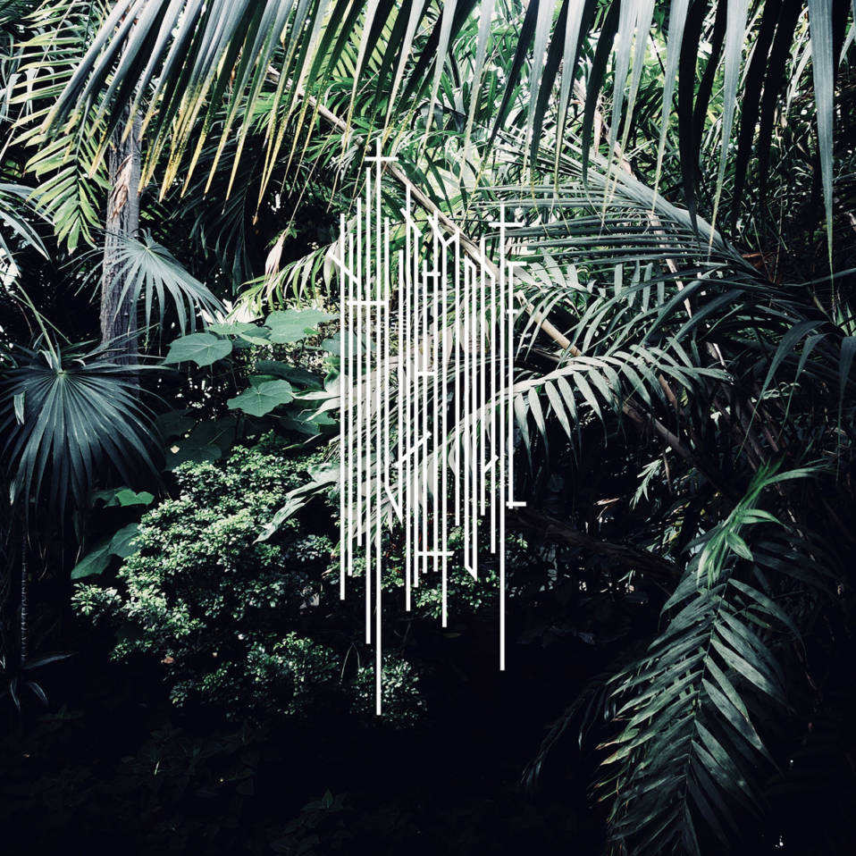 Nature Morte – NM1