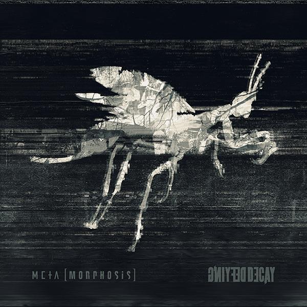 Defying Decay – Metamorphosis