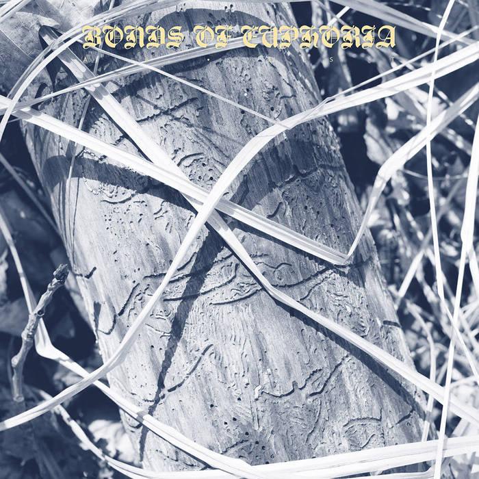 Abest – Bonds Of Euphoria