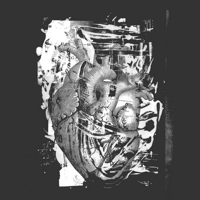 Contre-feux – Mort/Vivant